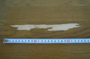 フローリング剥がれ No.110513